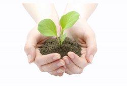 Филиал ВТБ в Томске выдает сельскохозяйственные кредиты