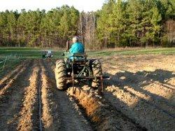 Госсобрание республики Мордовия просит отсрочить выплату сельхозкредитов